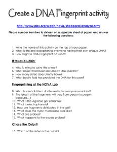 Dna Fingerprinting Lab Activity Student Study Guide Background