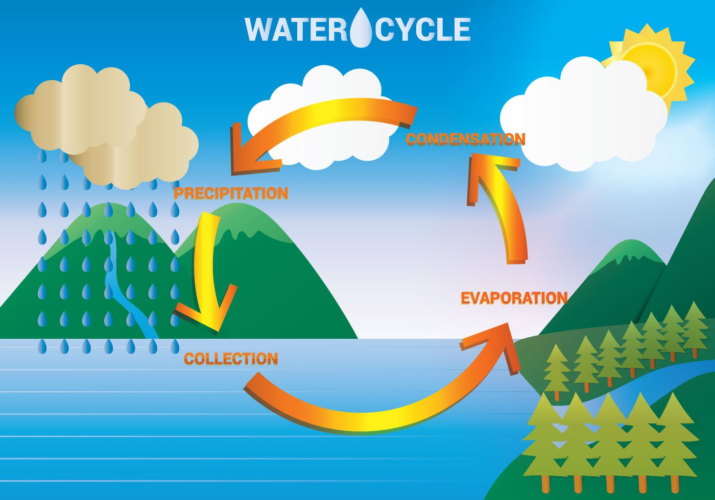 hight resolution of the water cycle lessons tes teach draw a diagram showing the water cycle the water cycle diagram show