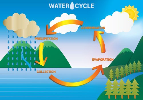 small resolution of the water cycle lessons tes teach draw a diagram showing the water cycle the water cycle diagram show