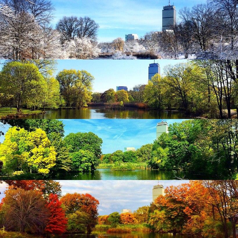 Картинки весна лето осень, поздравления выходные