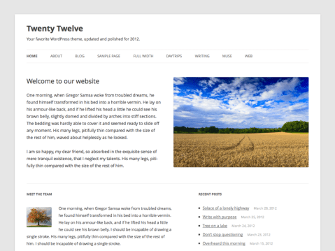 The 2012 theme for WordPress is a fully responsive theme that looks great on any device. Features include a front page template with its own widgets, an optional display font, styling for post formats on both index and single views, and an optional no-sidebar page template. Make it yours with a custom menu, header image, and background.