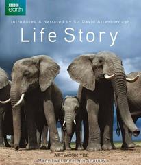 Life Story [2014][6/6] [HDTV 720p]