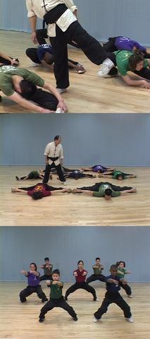 Artes Marciales: Capacitación Fundamental en Shaolin Kung Fu [DVD9]