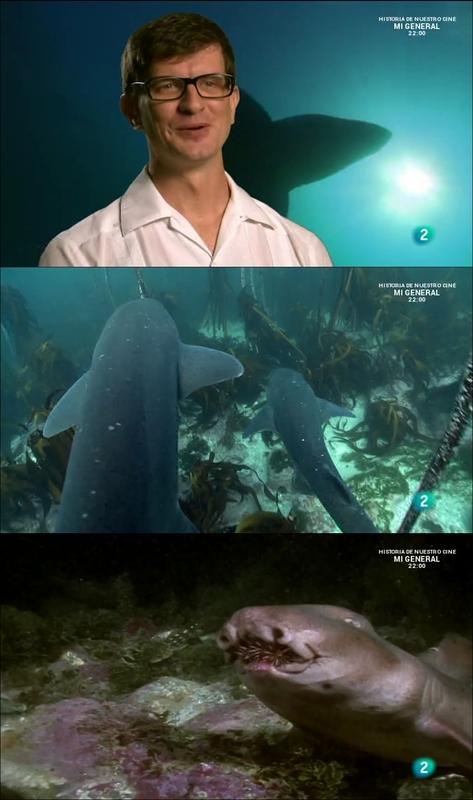 Tiburones impactantes [2015] [WEBDL]