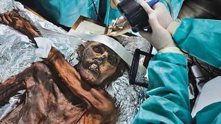 La autopsia del hombre de los hielos [2014] [WEBDL]