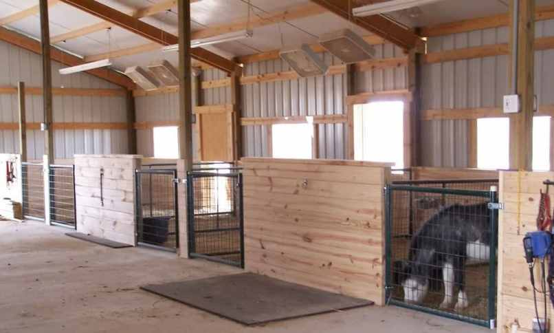 Cheap Diy Horse Stalls Diydrywalls Org