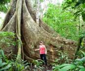 Trek Amazon Rainforest