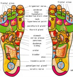 this is why it is important to massage your feet before going to sleep awesomejelly com [ 1600 x 997 Pixel ]