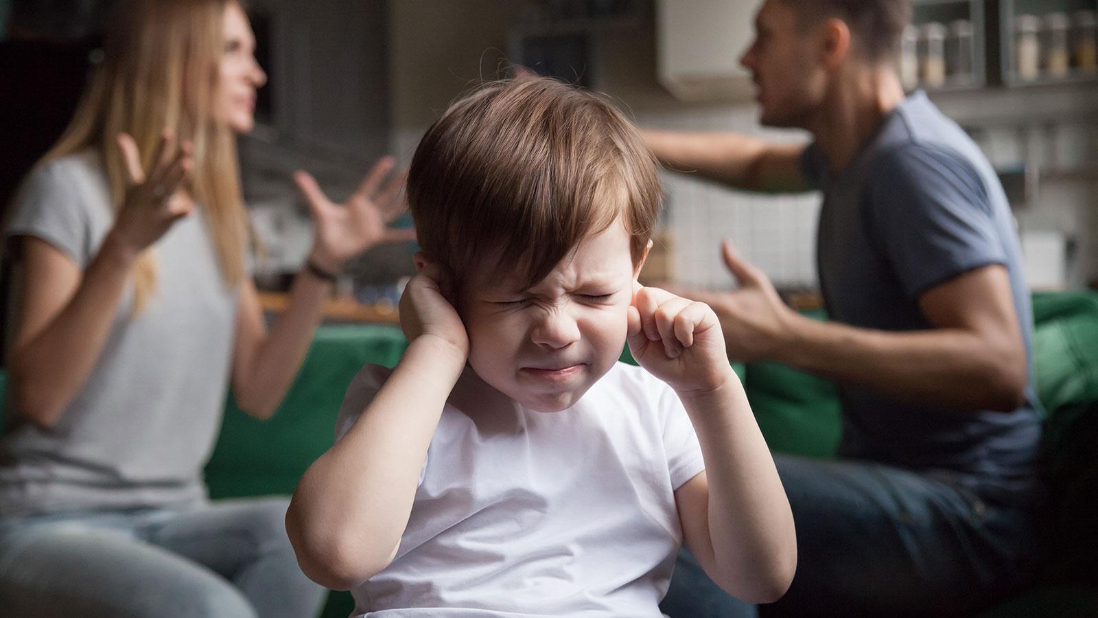 Los Problemas Familiares Afectan El Desarrollo Del Cerebro