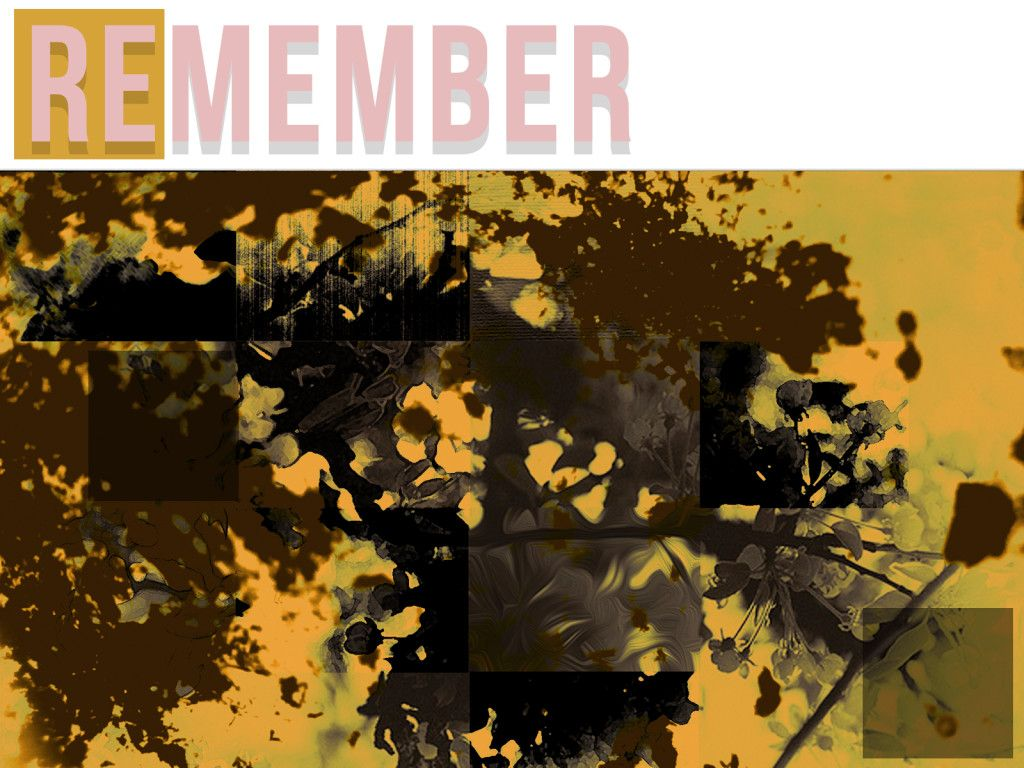 Remember_series Art