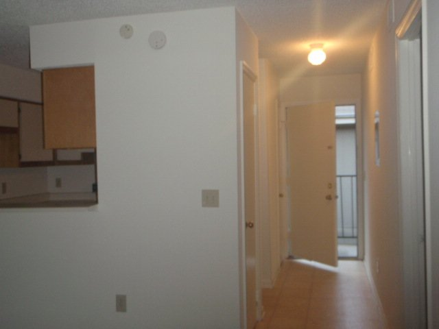 One Bedroom Apartments Auburn Al
