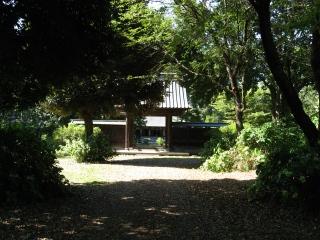 sashima17-1.jpg