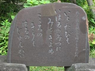 sashima4-1-3.jpg