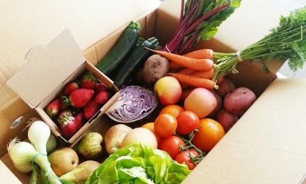 為什麼蔬果這麼重要?神奇植化素的5大好處!(上)