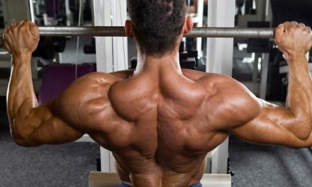 打造性感「虎背」!男人必學的背肌訓練法(一)