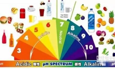 吃太多酸性食物讓身體變酸?!影響身體酸鹼的其實是…