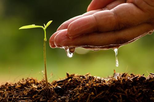「小人物」的春天:成就來自於做好每一件小事