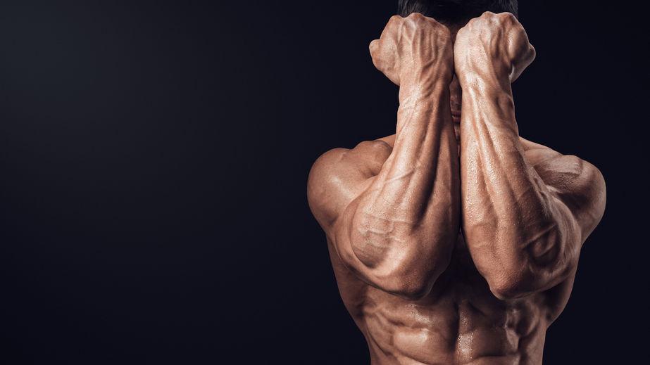 中秋採購提重物,你需要的是更強大的握力訓練法!(下)