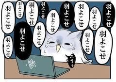 yjimage (80)