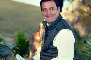 Rahul Gandhi appointed Celestine Lyngdoh as president of the 13-member Pradesh Election Committee for the upcoming assembly elections in the state. Credit: PTI