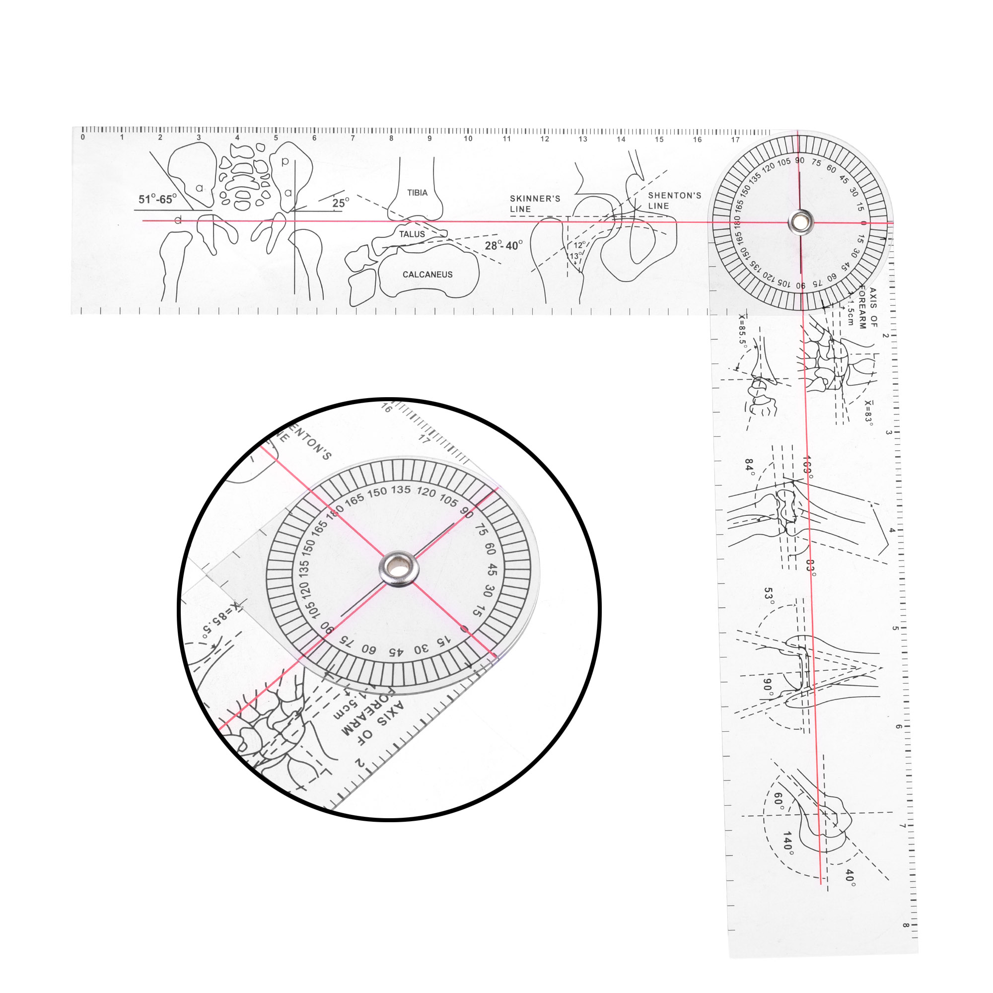 Plastic 15'' Goniometer Protractor Style 360 Degree For