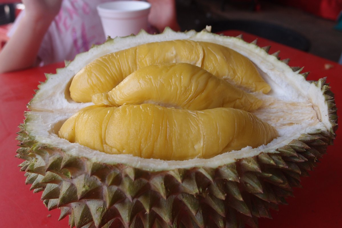 review-taste-test_durian-fever_musang-king