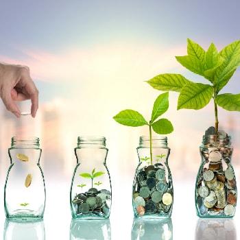 investing principles newbie