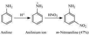 NCERT Solutions For Class 12 Chemistry Chapter 13 Organic