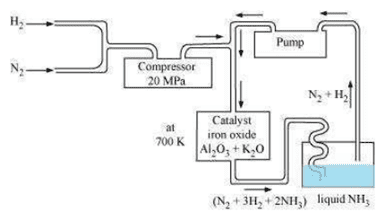 NCERT Solutions Class 12 Chemistry Chapter 7 The p Block