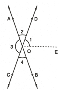 RD Sharma Solutions Class 7 Maths Chapter 14 Lines and