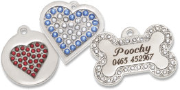 pet tags pet name