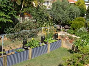Plan to Plant  Horticultural Garden Design Services  Garden Styles