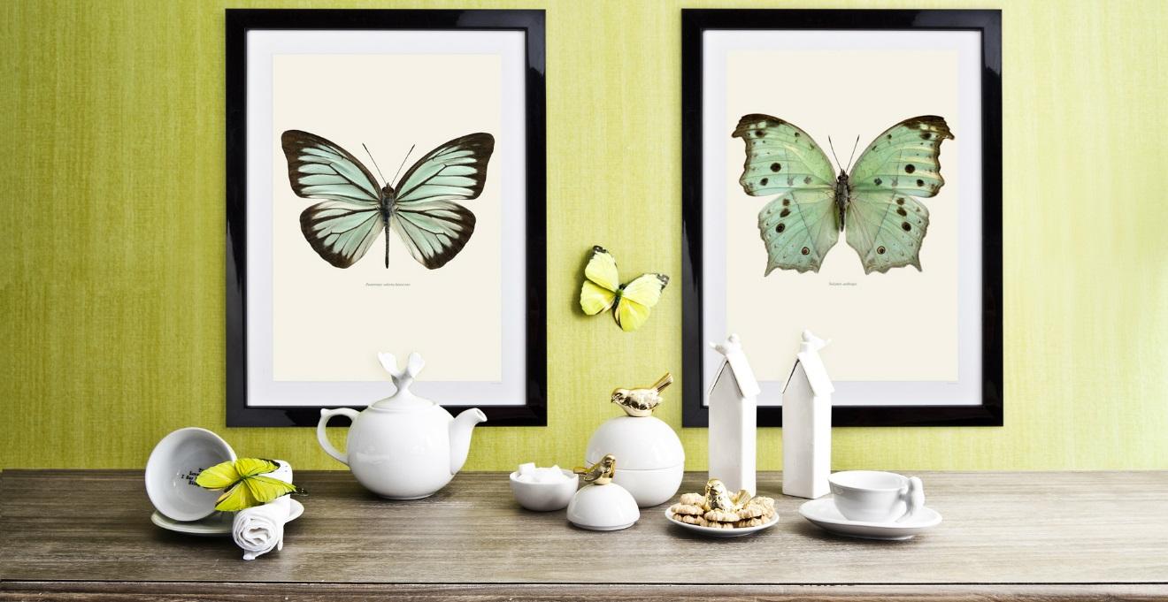 DALANI  Stampe per cucina colore per le tue pareti