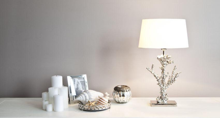 Decoreer je huis met prachtige schelpen  Westwing