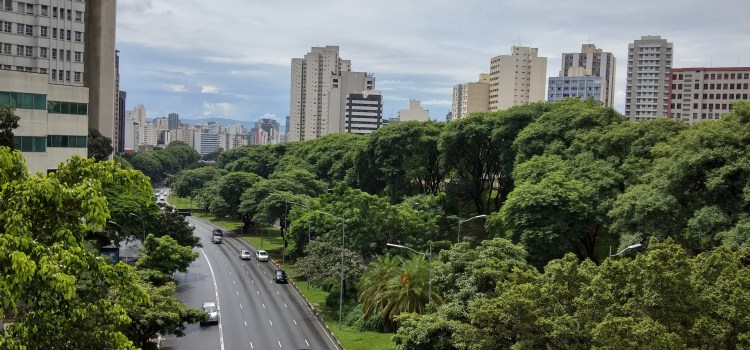 Sao Paulo skyline and greenery