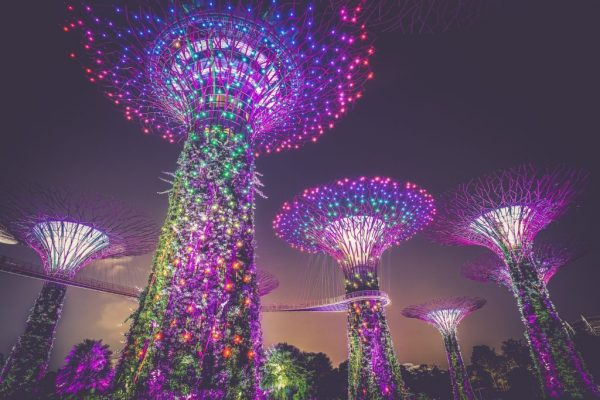 A view of Singapore's artificial trees, complete with walkways and lights.