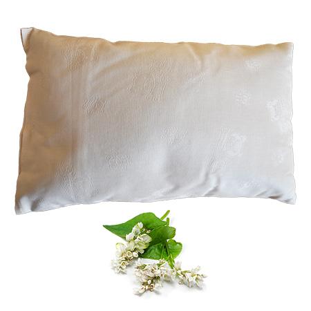 Buckwheat husk pillow  Eco Health Lab