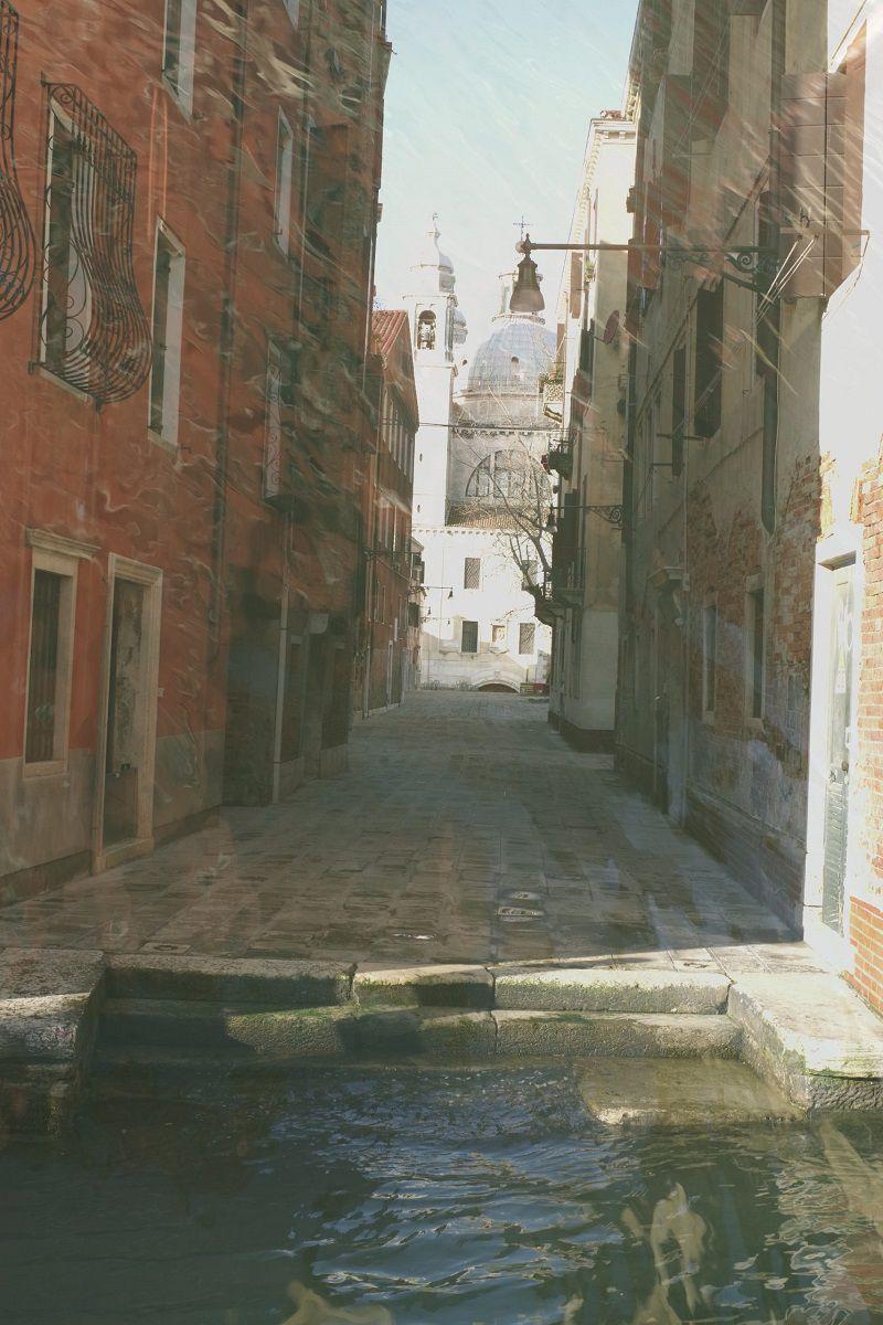 zaterre-venice-updates-medland-prokect