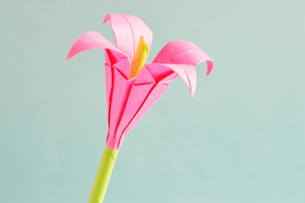 Mit Blumen basteln Diese DIY Ideen bringen dich ins schwrmen