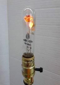 JuxtapozFloralLightbulbs03