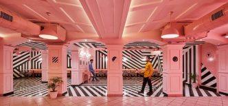 pink-zebra-14