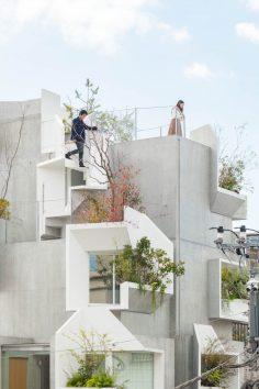 tree-ness-house-3