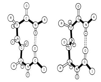 Modelling of β-turns using Hidden Markov Model Essay