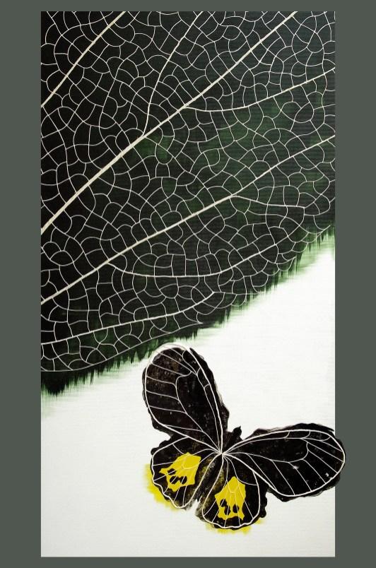 farfalla colore linea natura fastweb