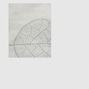 folgia impronta disegno linea minimal