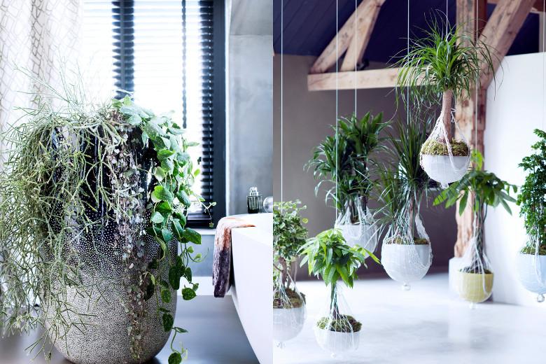 Urban jungle  interieur trend