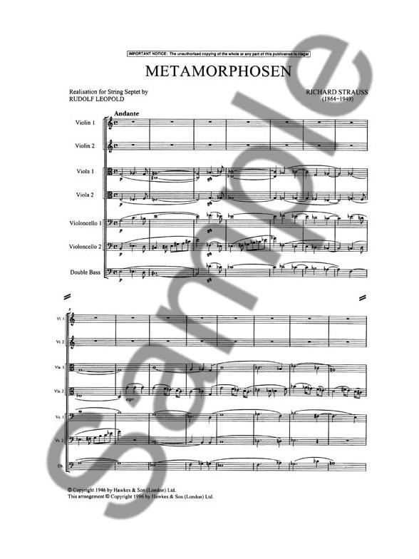 Richard Strauss: Metamorphosen (Realisation For String