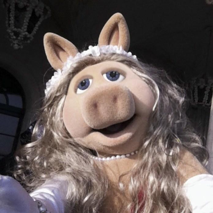 ClioMakeUp-Miss-Piggy (13)