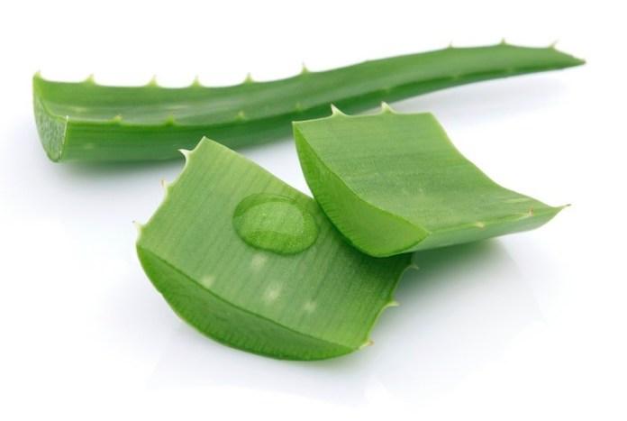 ClioMakeUp-sopracciglia-come-farle-crescere-sane-folte-aloe-vera.jpg