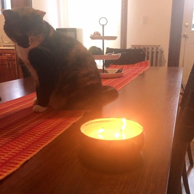 ClioMakeUp-candele-profumate-preferite-assoluto-clio-mimi